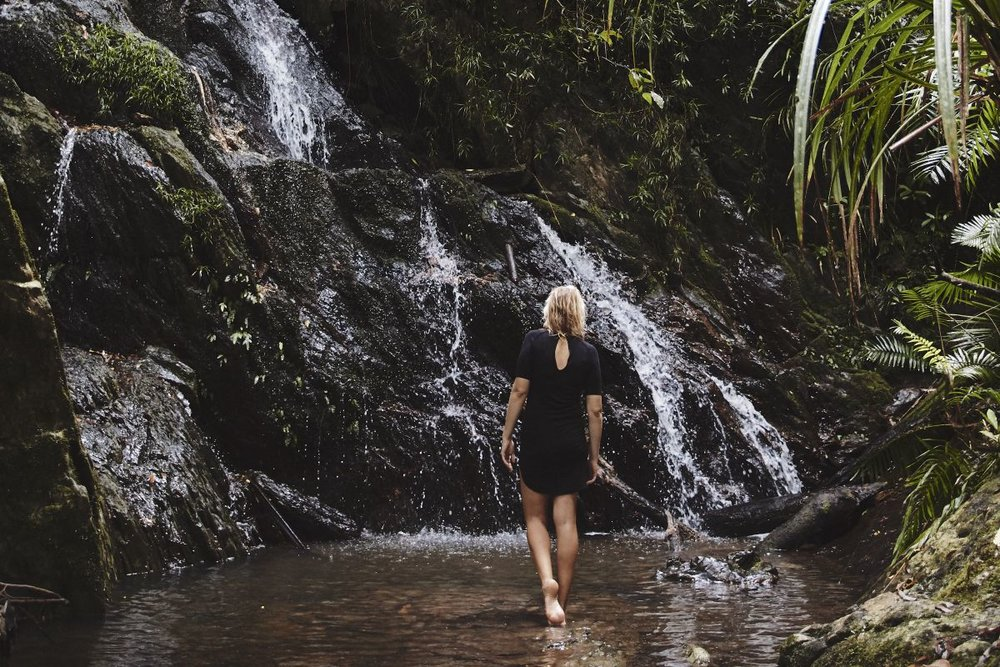 Daintree waterfall-direct.jpg