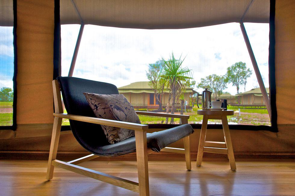 Wildman tent window.jpg