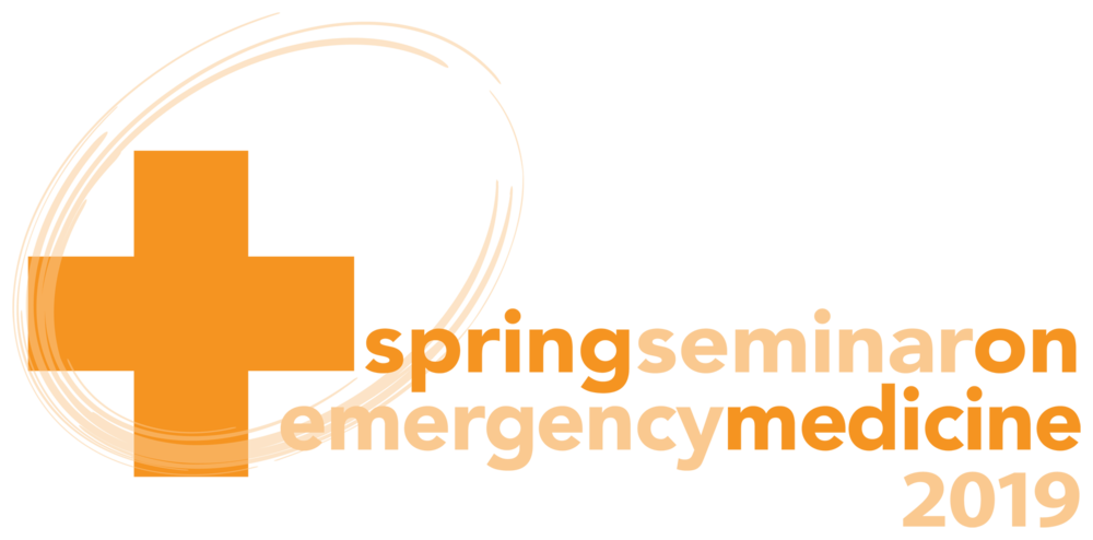 SSEM19 logo_col.png