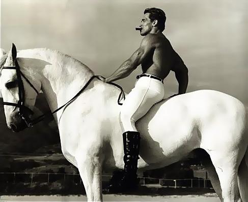 Arnold Schwarzenegger on a white horse with a cigar in his mouth.