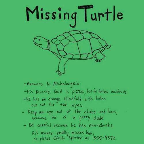 missing-turtle