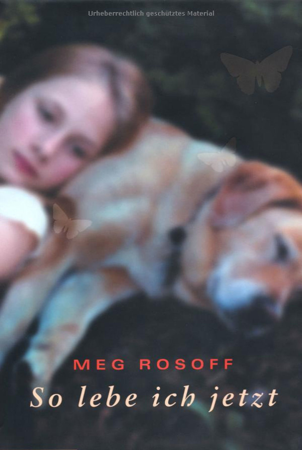 Meg-Rosoff---How-I-Live-Now---So-Lebeich-Jetzt-3.jpg