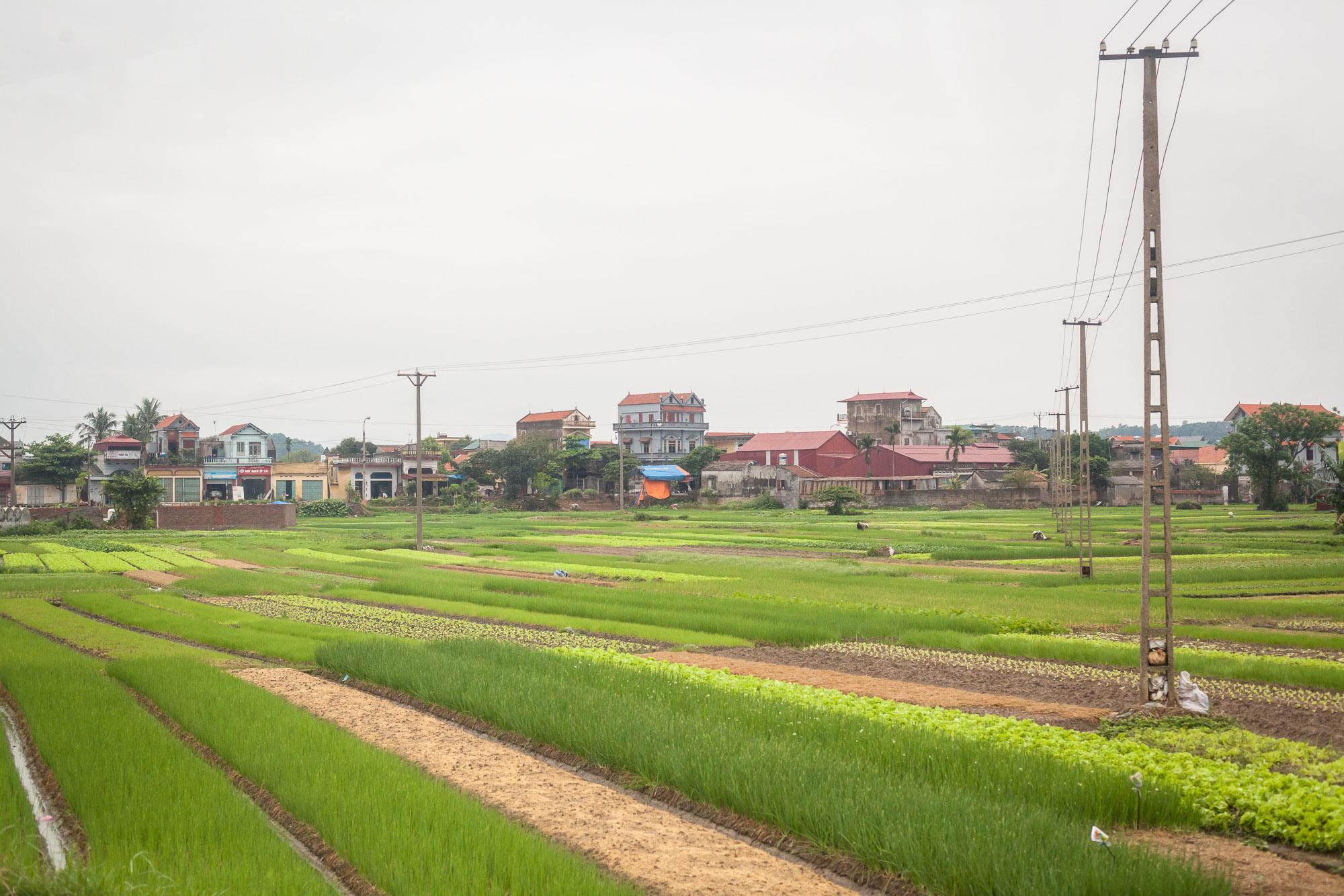Wiegelmann-Vietnam-Hanoi-130410-12