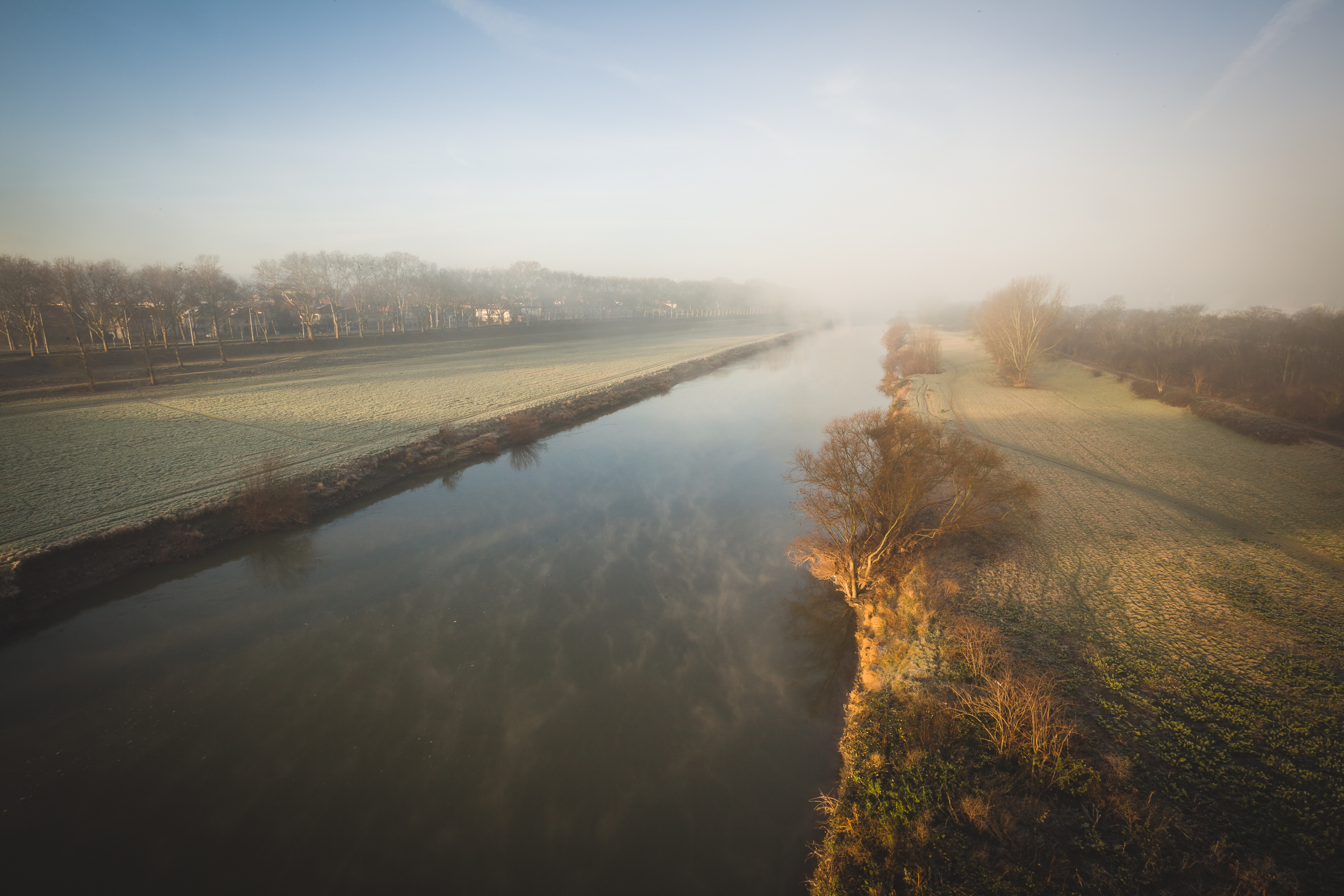 Morgens-in-Mannheim-140112-0021