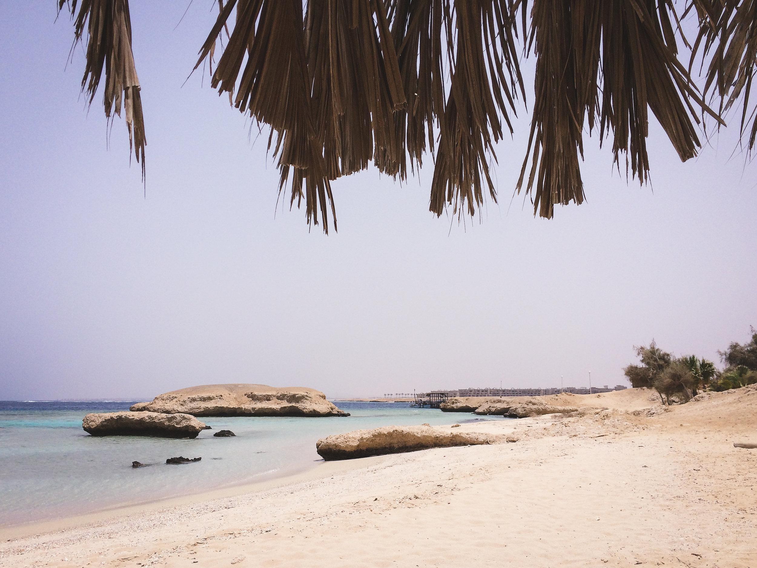 MangroveBay-Ägypten-20140606-02