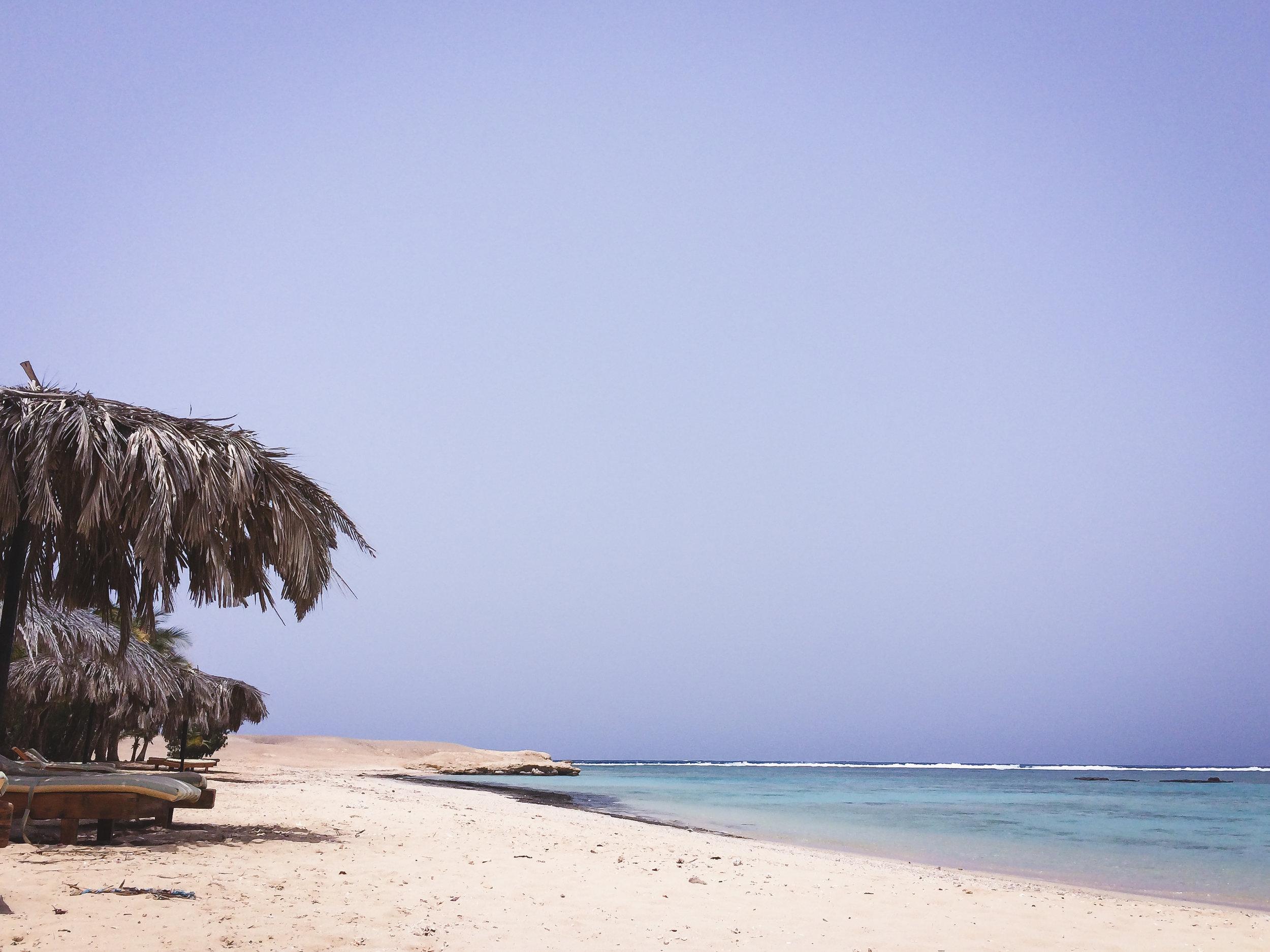 MangroveBay-Ägypten-20140606-03