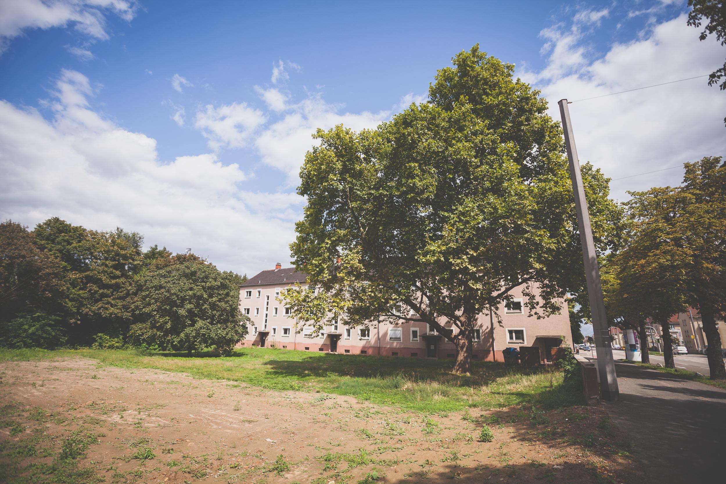 Mannheim-Weitwinkel-140817-0012
