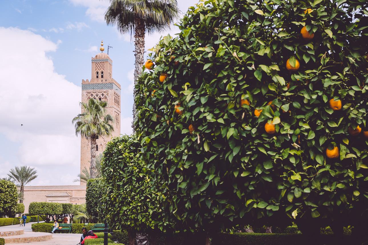 Marrakech-150212-0167