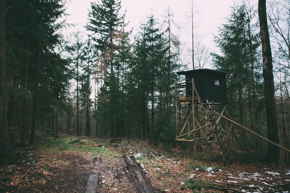 Spaziergang-Wilhelmsfeld-160124-0004