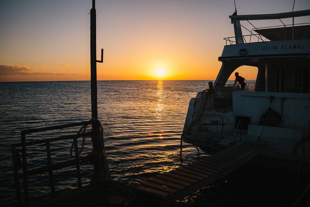 Mangrove-Bay-161230-134-860px