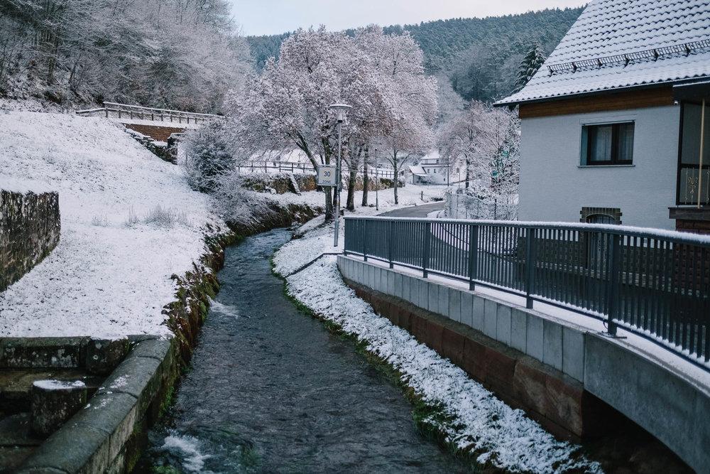 Odenwald-Liebe-190118-022.jpg