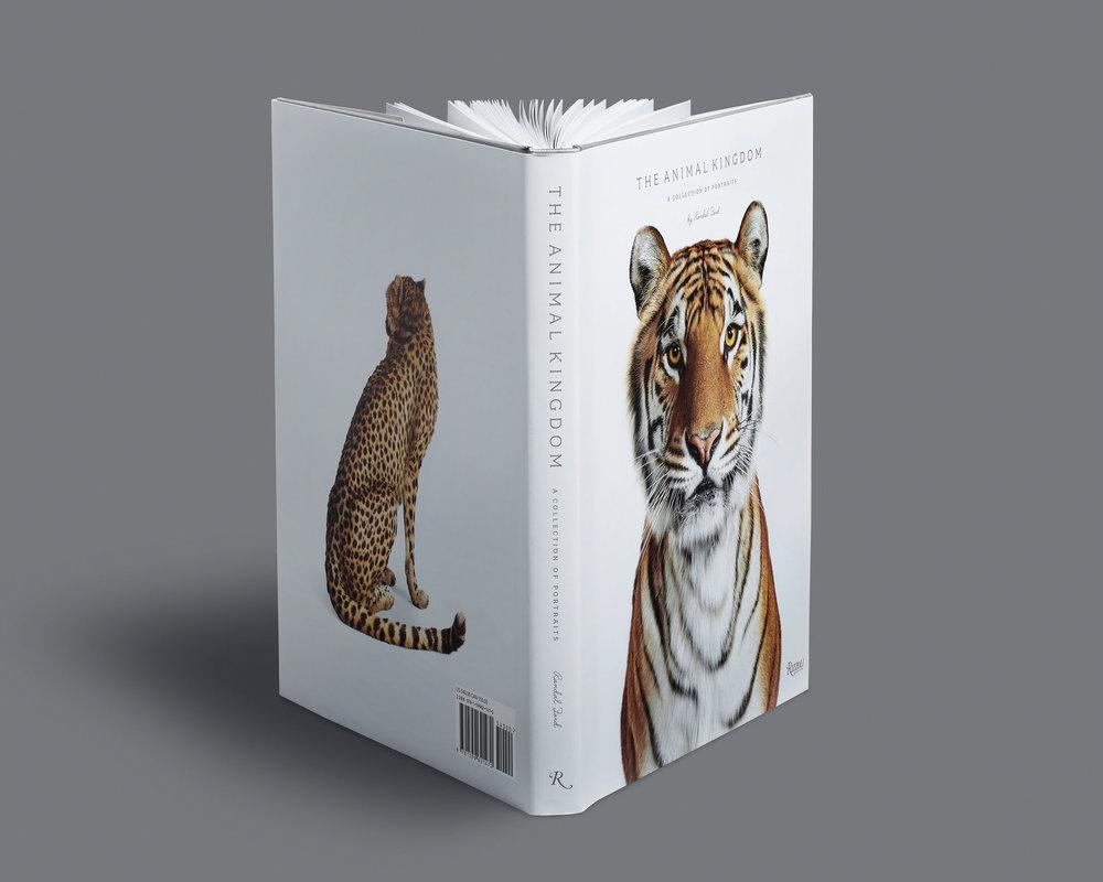 Animal_Kingdom_Stadning.jpg