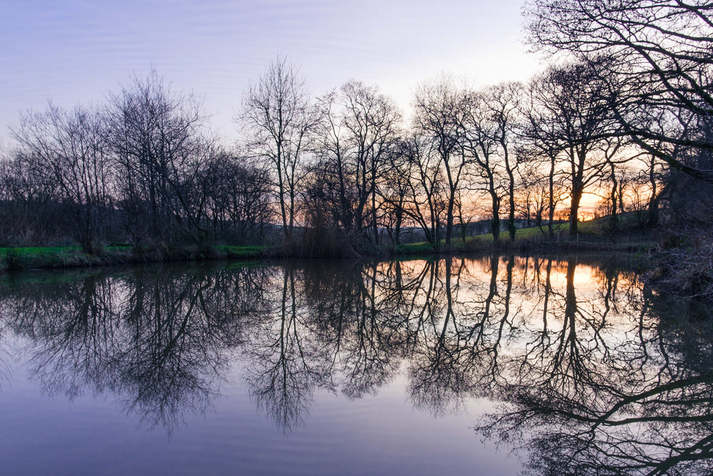 dansoleyphotography-tinney-waters-2-web-23.jpg
