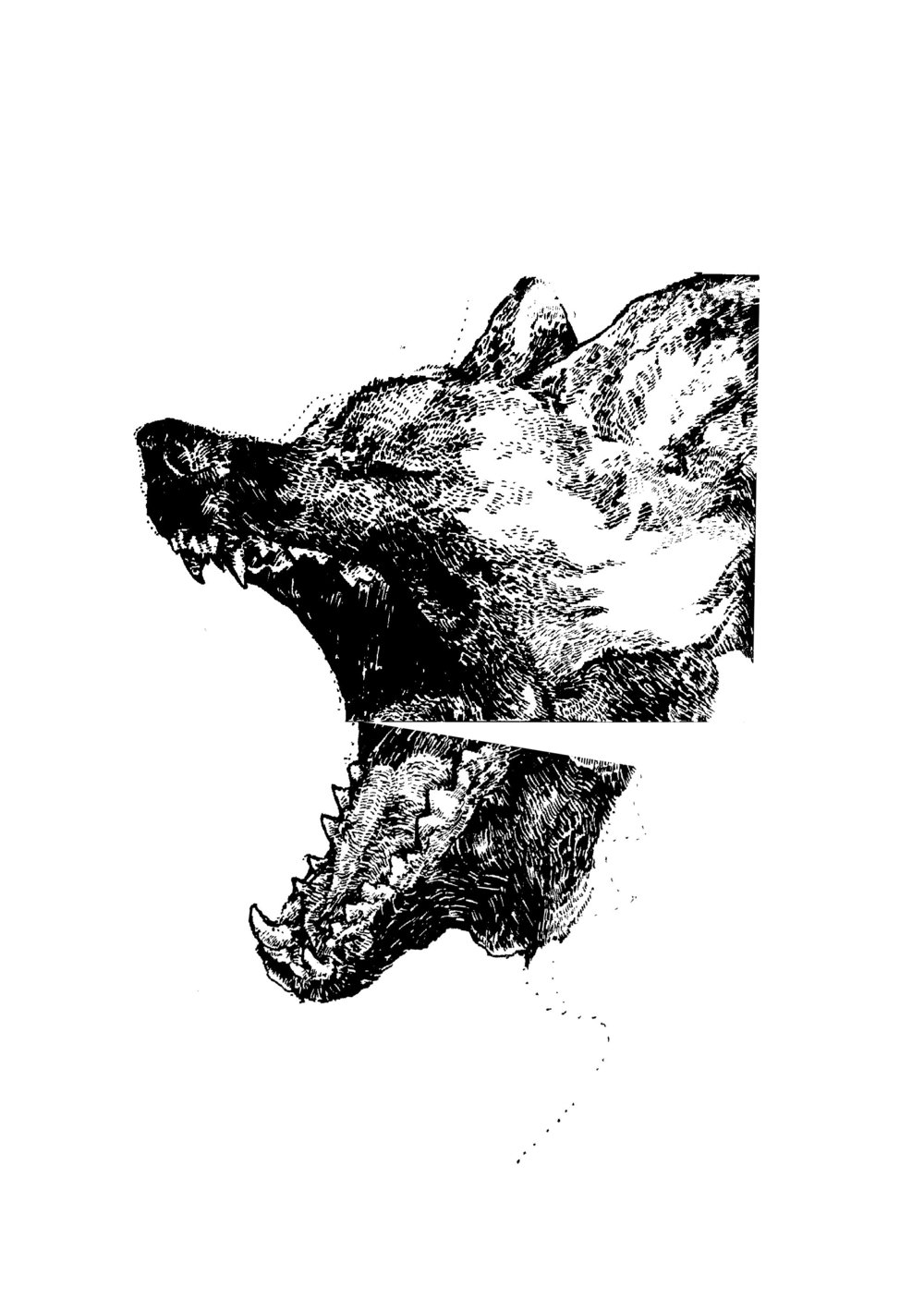 howler split.jpg
