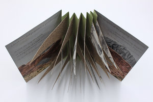 Books - artists' books & zines