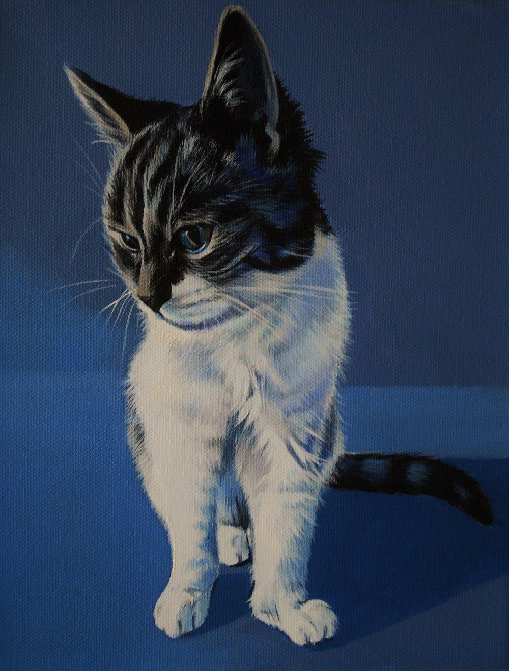 Kitty_final painting.JPG