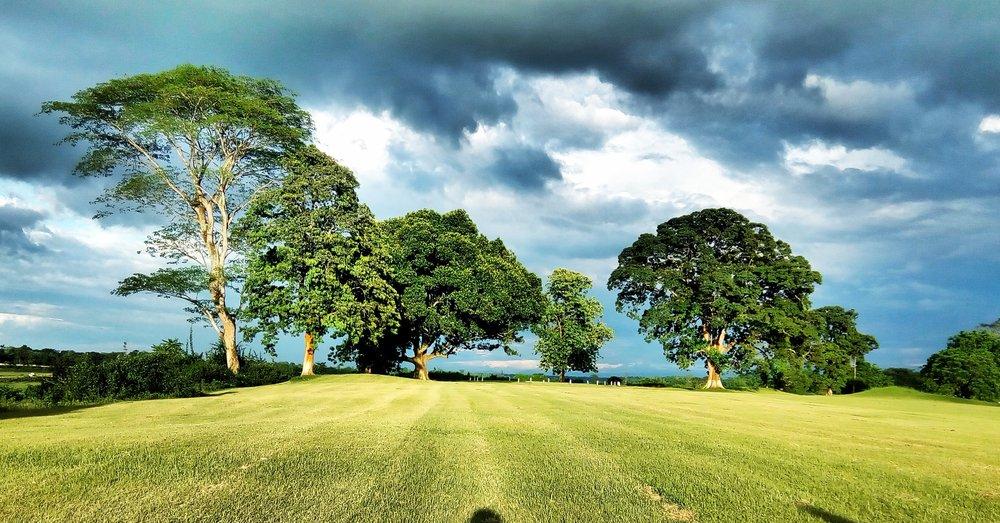 Golf_course_Doomdooma_Assam.jpg