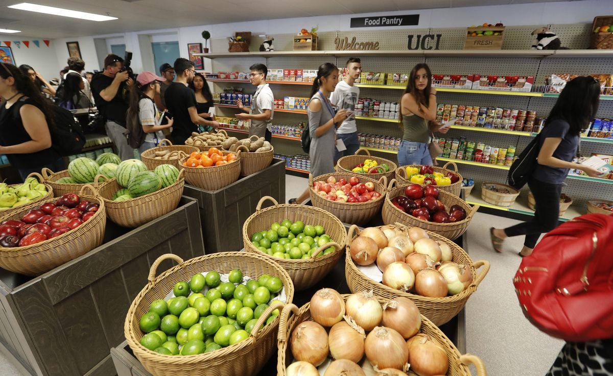 SA Meets with OPAL and FYSEP to Discuss Food Pantry System