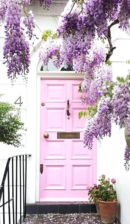 This pink door and these purple flowers
