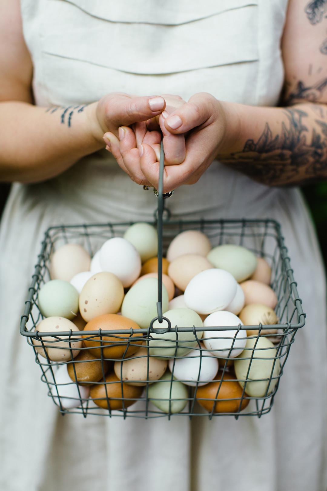 Egg-Basket-1080x1620