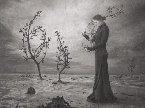 Rusty Cage - Dariusz Klimczak