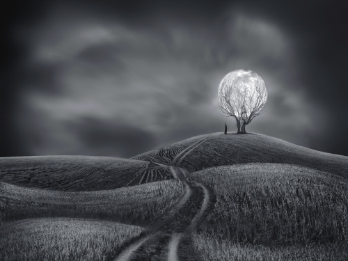 Illuminate My World - Sherry Akrami