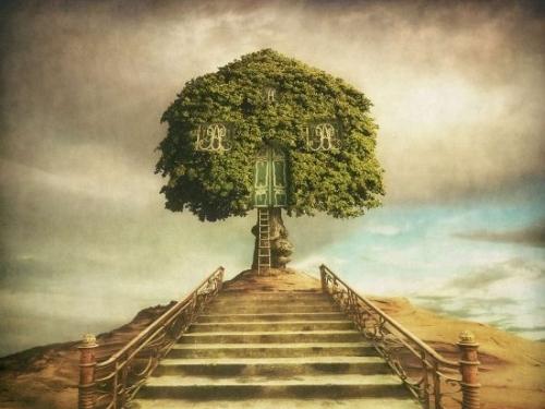 Treecastle - Dariusz Klimczak