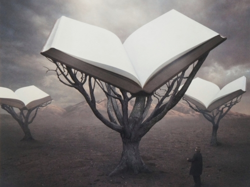 The Book-keeper - Sarolta Bán