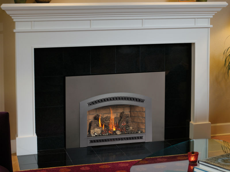 Northern Michigan's Fireplace Xtrordinair 31 DVI gas insert retailer.