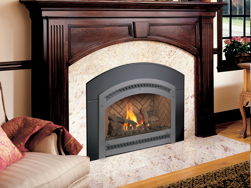 Northern Michigan's Fireplace Xtrordinair 34 DVL gas insert retailer.
