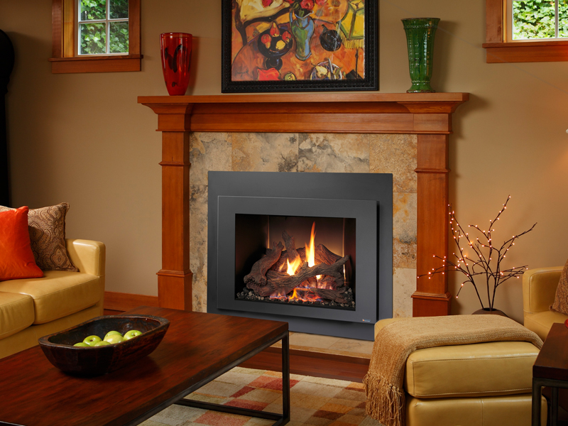 Northern Michigan's Fireplace Xtrordinair 616 GSR gas insert retailer.