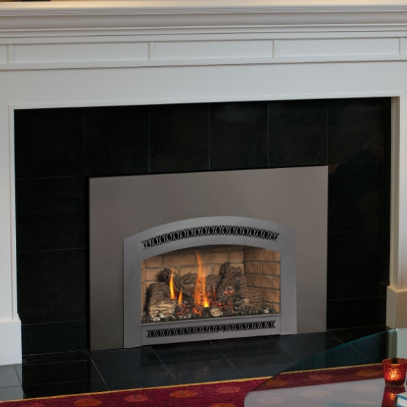 Fireplace Xtrordinair |31 DVI -