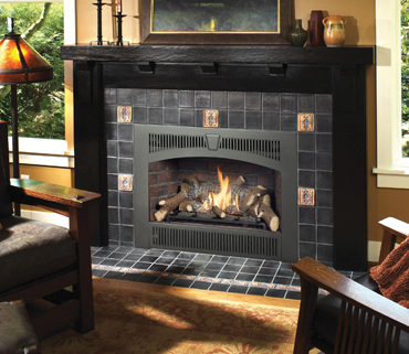 Northern Michigan retailer of the Lopi 564 High Output gas fireplace.