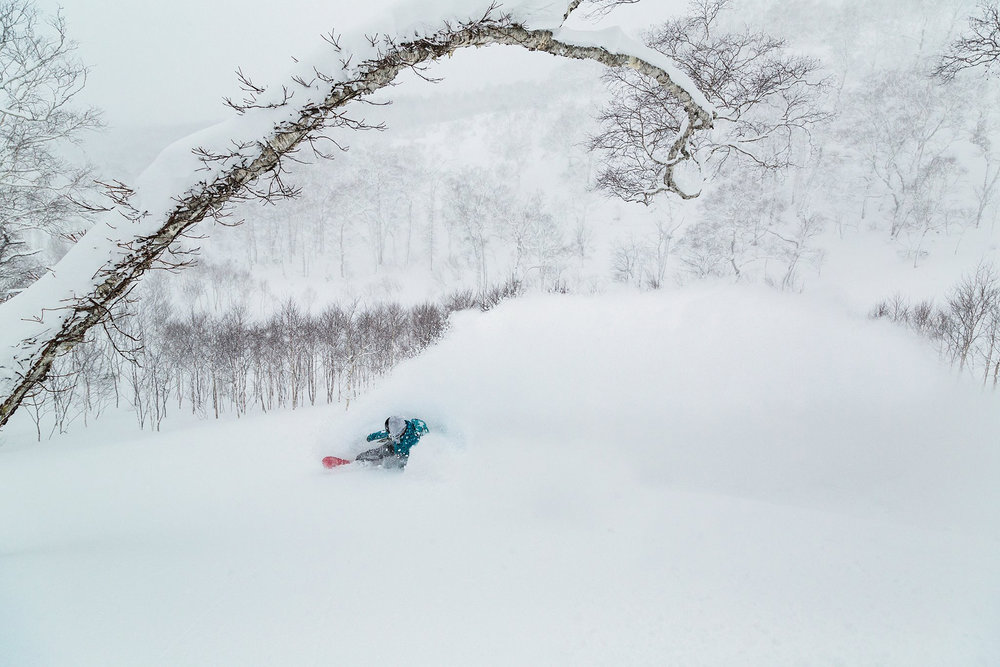 Get the best powder shots