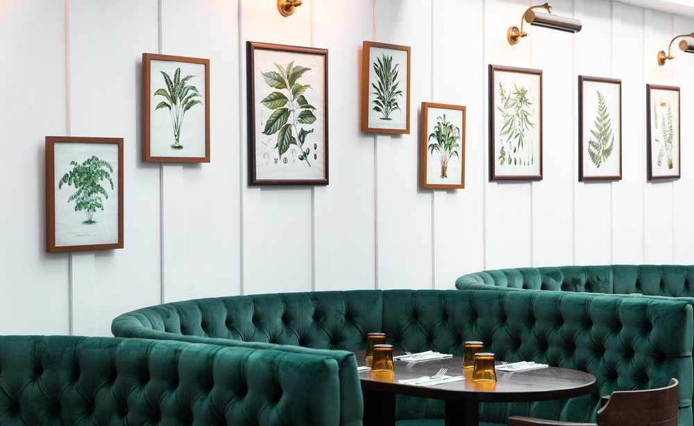 Cafe-Hampstead-clairemenary.com-7-2280x1400.jpg