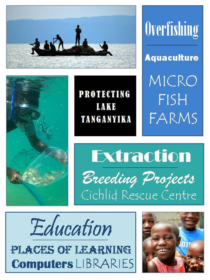 Lake Shore Aquaculture page - front.jpg