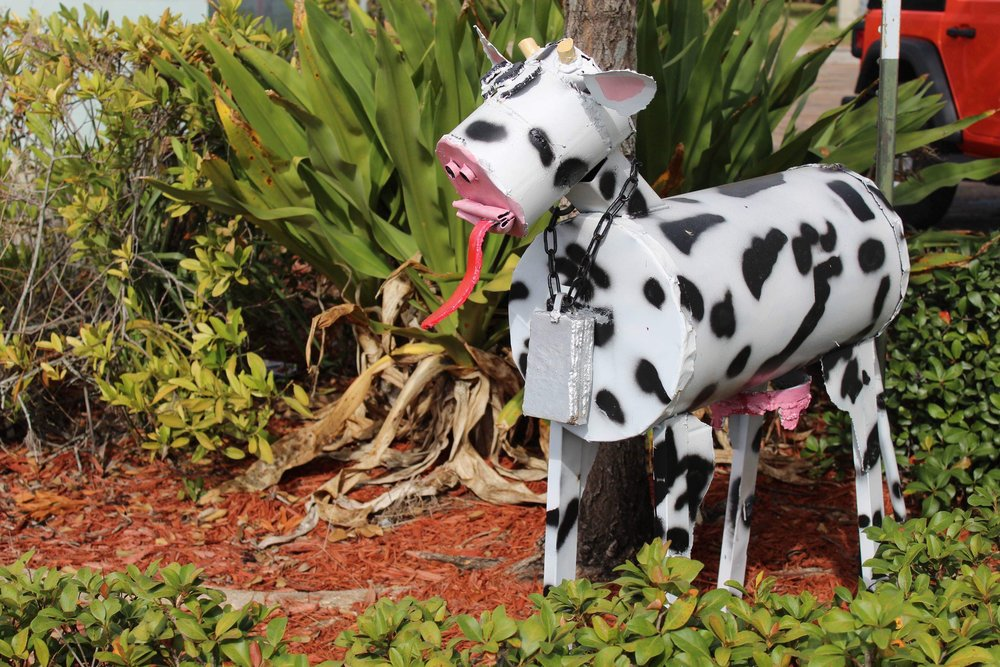 Mable the Main Street Cow