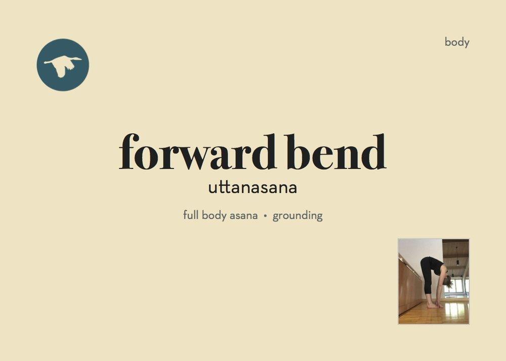 104P_FW_ForwardBend.jpg