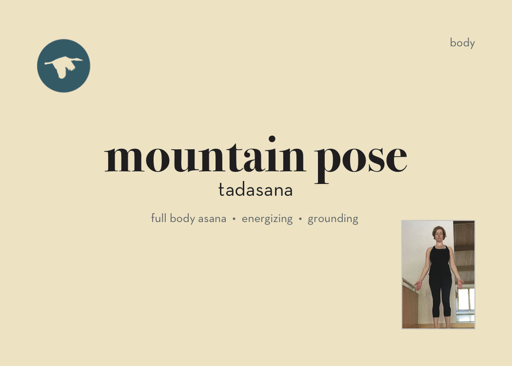 100P_FW_MountainPose.jpg