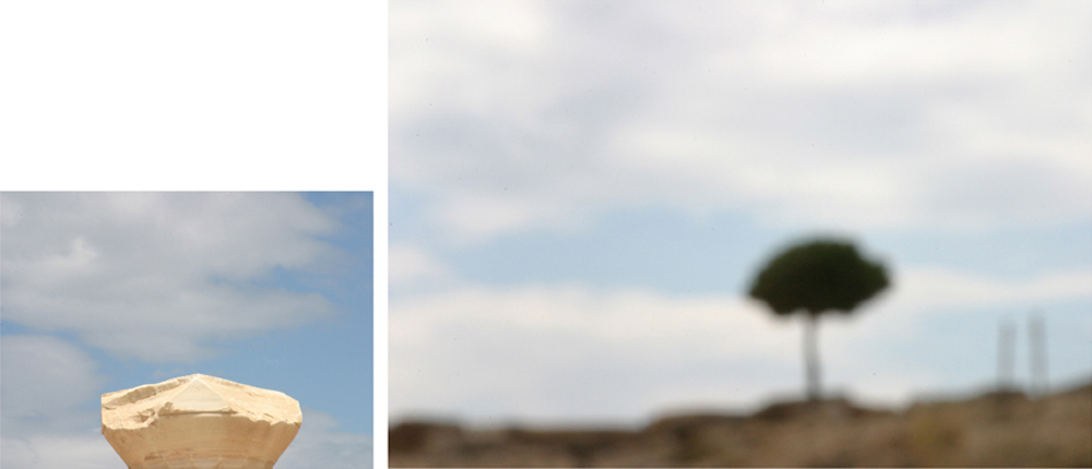 Rock and Tree Diptych, 2006 – 22 x 50