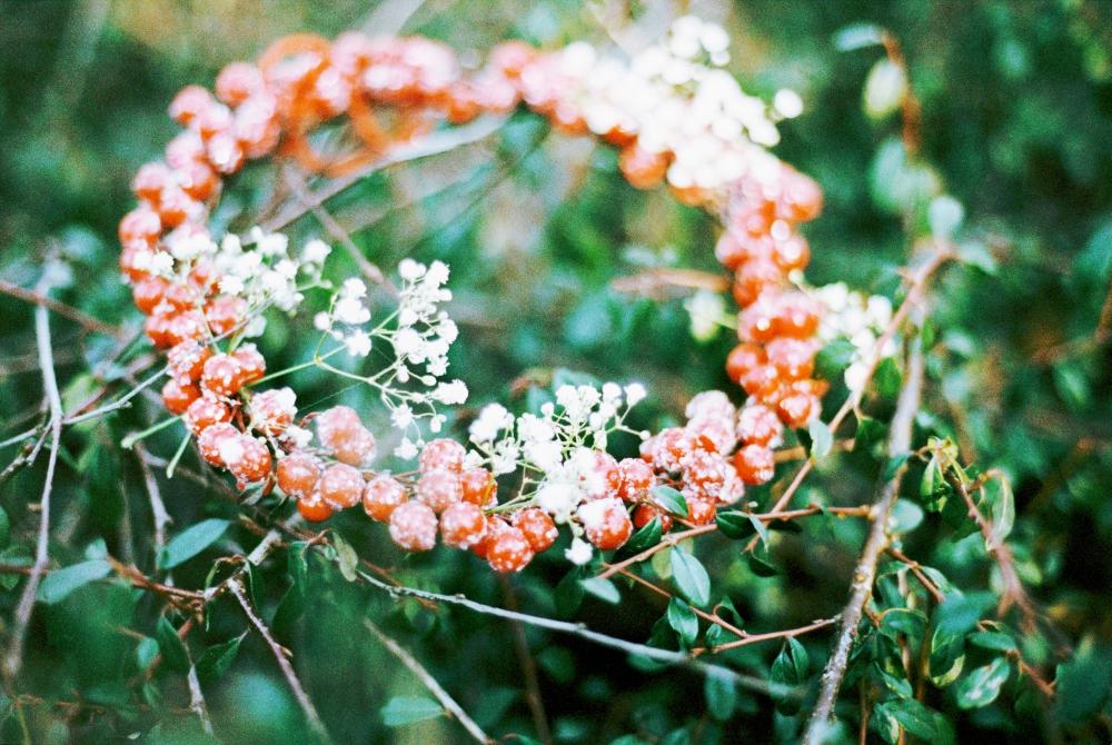 bilderwebMariaVictoria-39.jpg