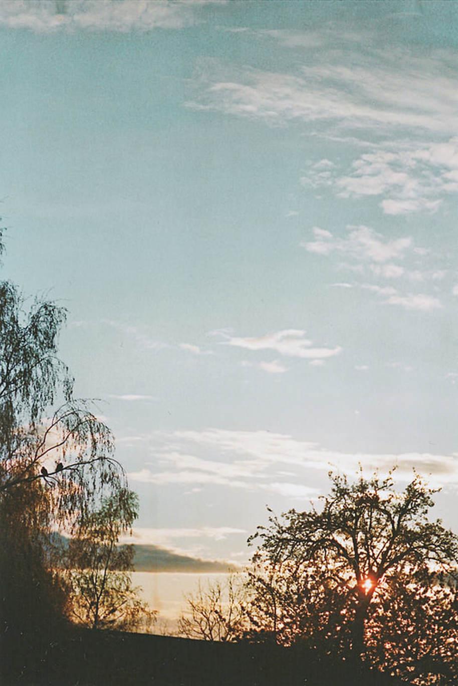 scn-0036.jpg