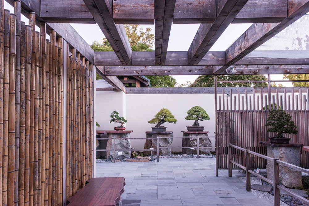 Renovated Japanese Pavilion - Photo by Stephen Voss