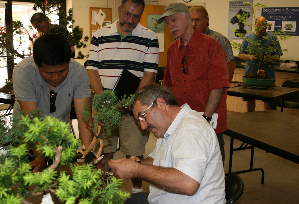 Bonsai Classes