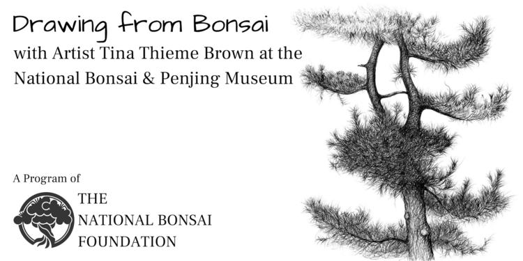 Events — National Bonsai Foundation