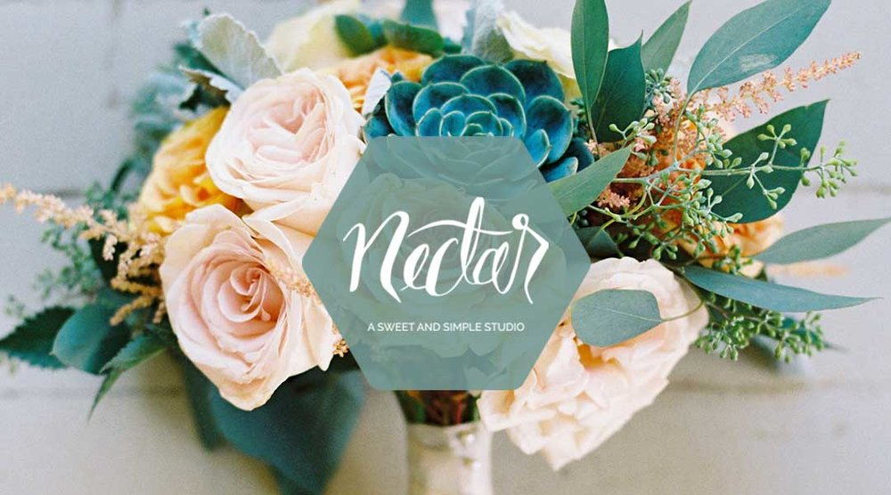 NECTAR  Strategy and Branding for an aesthetics brand