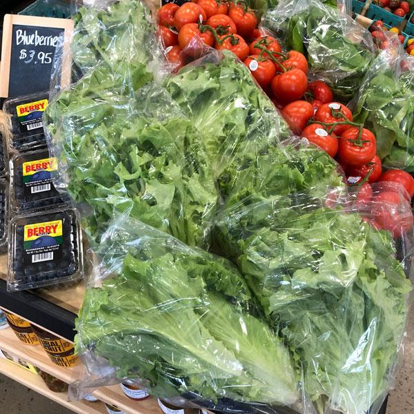 harvest-lettuce.jpg