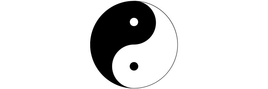 ying yang web master 2.jpg
