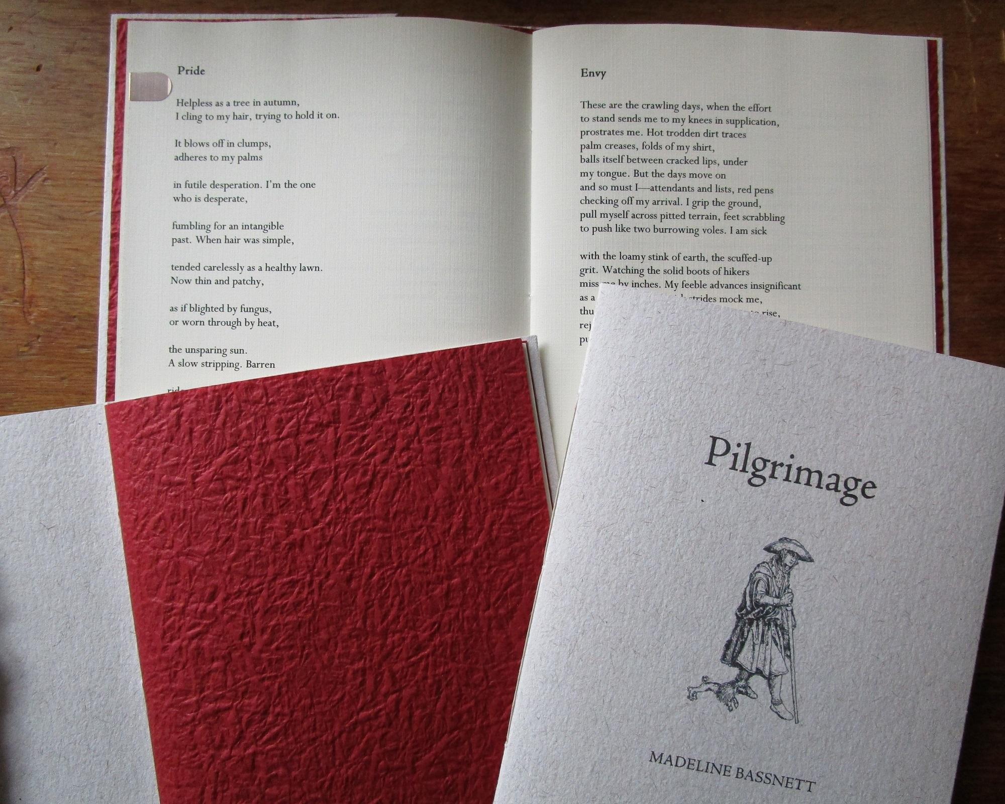 Pilgrimage // Madeline Bassnett // 2016 — Baseline Press
