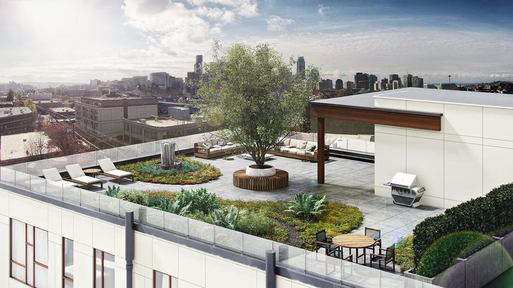 Rooftop_Solis.jpg